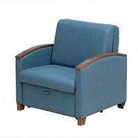 Luxurios Foldable Accompany Chair Bed